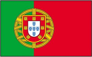 Portugal-flag-194-p-ekm-1000x622-ekm-